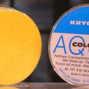 Aquacolor Giallo 509 da 8 ml art 1101